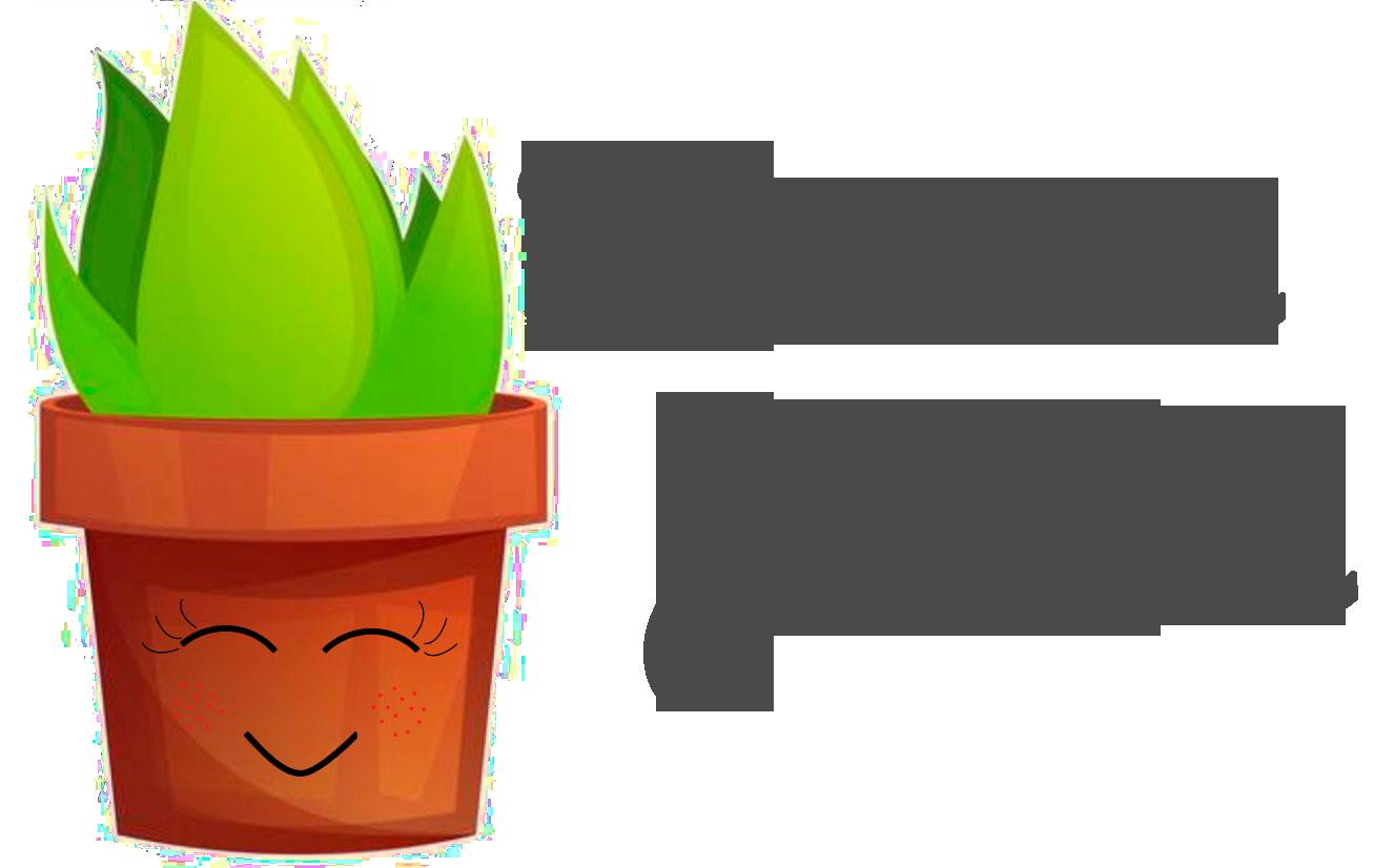 Tu mini jardin